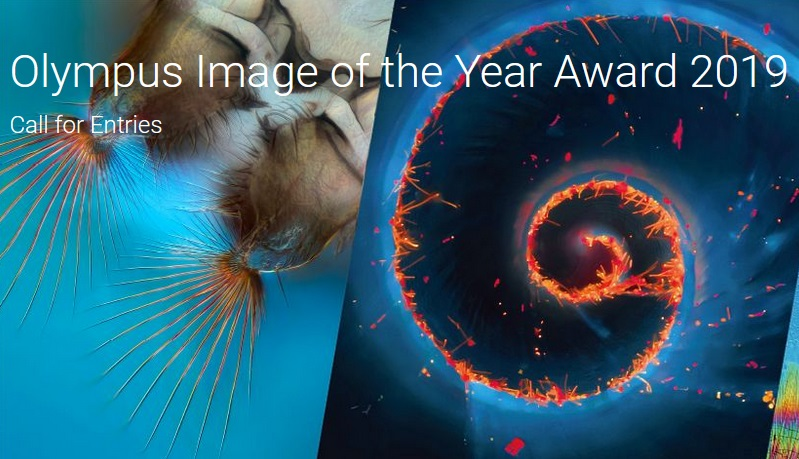 Olympus Image of the Year Award