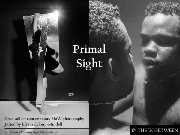 Primal Sight: Contemporary B&W Photography