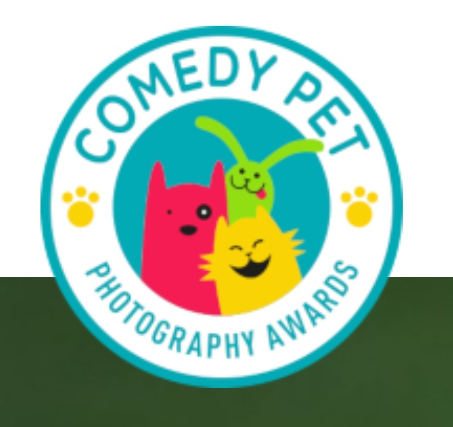 Comedy Pet Photography Awards