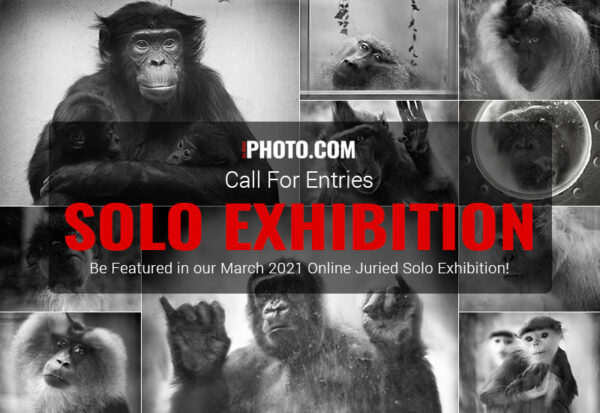 Win an Online Solo Exhbition