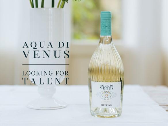 Aqua di Venus Looking for Talent