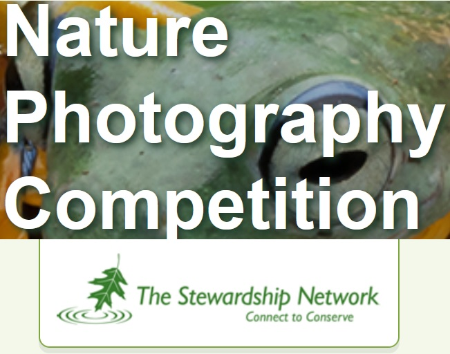 Stewardship Network Photography Competition